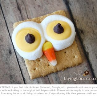Owl Smores from Living Locurto