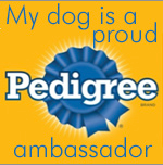 Pedigree Ambassdaor