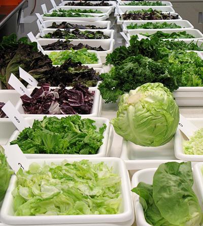 Dole Salad Taste Test