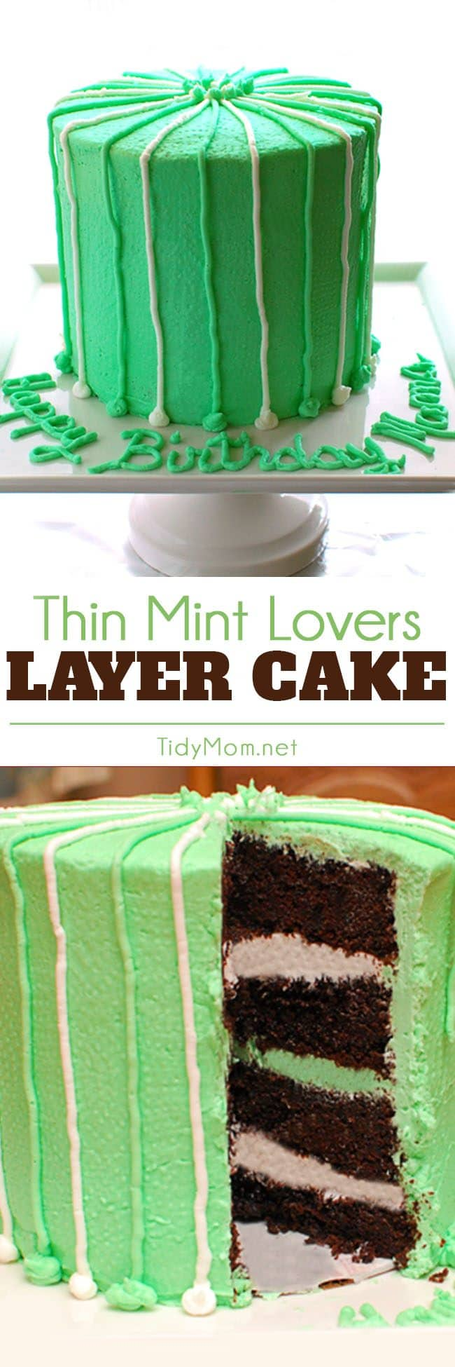 This easy and delicious Thin Mint Cake is perfect for the chocolate mint lovers! Click the image to get the recipe at TidyMom.net and learn about the unexpected ingredient that makes it extra moist!