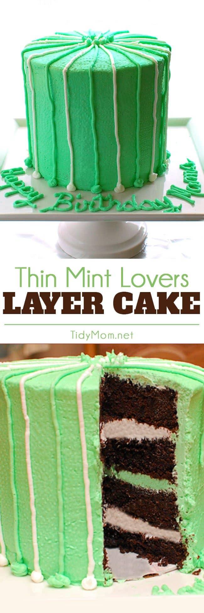 Thin Mint Cake i