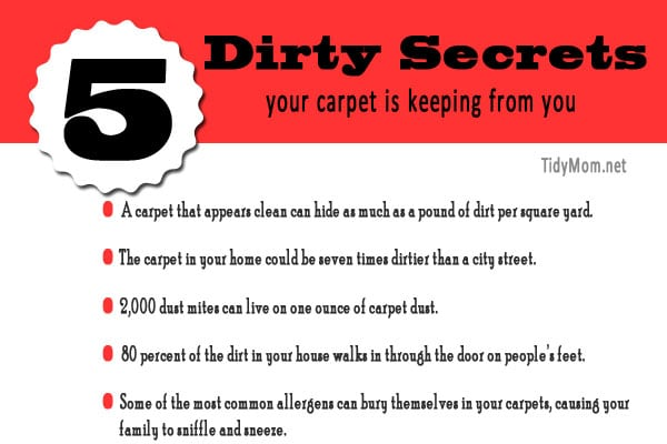 5 Dirty Secrets About Your Carpet At TidyMom.net