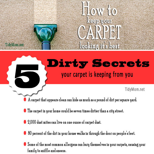 Tips on how to keep your carpets looking their best at TidyMom.net