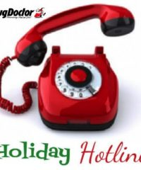 Rug Doctor holiday hotline