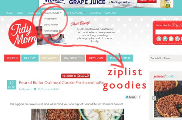 ziplist tools how to use at TidyMom.net