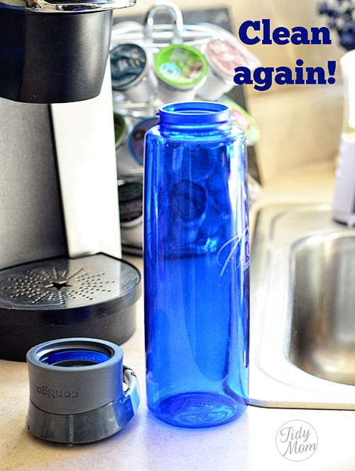 Clean moldy bottle with Clorox Bleach Water TidyMom