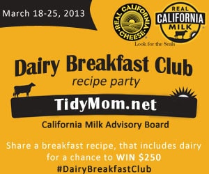 Dairy Breakfast Club recipe party at TidyMom.net