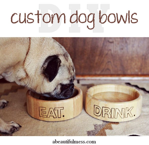 DIY Custom Dog Bowls