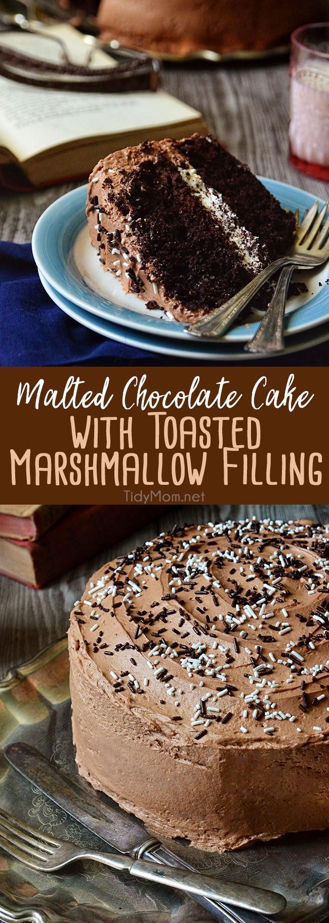 If you only have the chance once in your life to eat chocolate cake, let it be this Malted Chocolate Cake with Toasted Marshmallow Filling.  You'll die happy and complete, I promise. Get the full printable recipe at TidyMom.net