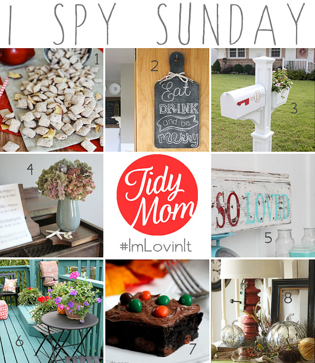 I Spy Sunday - features from I'm Lovin' It Linky Party at TidyMom.net