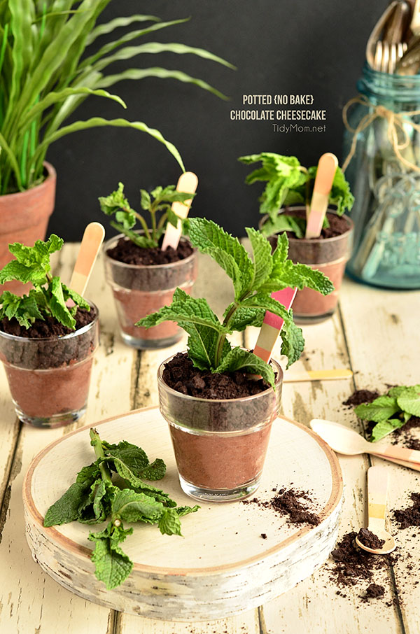"These may look like darling potted herbs, but these Potted Chocolate Cheesecake sprout to life when they are topped with ground cookie ""dirt"" and a sprig of fresh mint! No-Bake Potted Chocolate Cheesecake perfect for Mother's Day, bridal shower or spring/summer soiree. recipe at TidyMom.net"