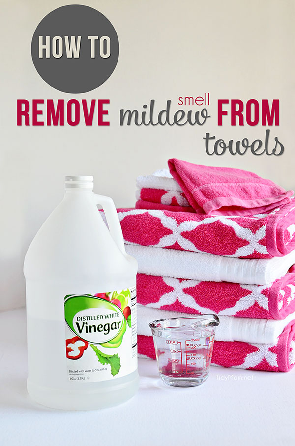 Prevent And Remove Mildew Smell From Clothes Tidymom