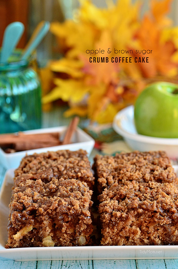 Brown Sugar and Apple Crumb Coffee Cake recipe at TidyMom.net