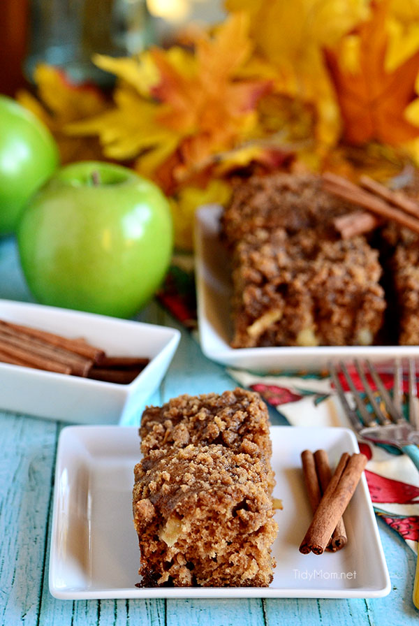 This easy-to-follow apple coffee cake recipe has all the taste of fall. Get the Brown Sugar and Apple Crumb Coffee Cake recipe at TidyMom.netApple and Brown Sugar Crumb Coffee Cake recipe at TidyMom.net