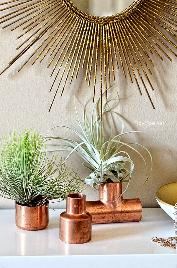 Use copper plumbing supplies to display air plants at TidyMom.net