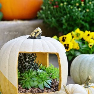 Gold Faux Pumpkin planter filled with succulents at TidyMom.net