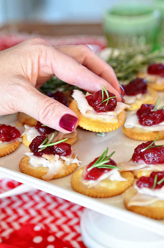 Turkey Cranberry Toppers close up