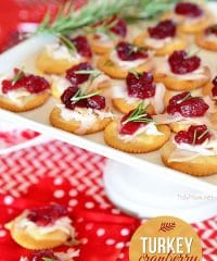 Turkey Cranberry Toppers on white tray