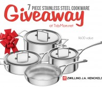 7 piece Zwilling Aurora 5-ply 7-pc Stainless Steel Cookware Set GIVEAWAY at TidyMom.net