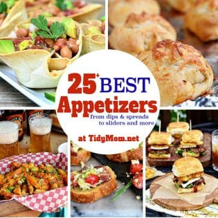 Party Ready! 25+ Best Appetizer Recipes - from dips and spreads to siders and more at TidyMom.net
