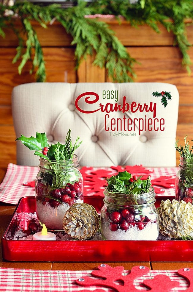 Easy Christmas Cranberry Centerpiece - details at TidyMom.net