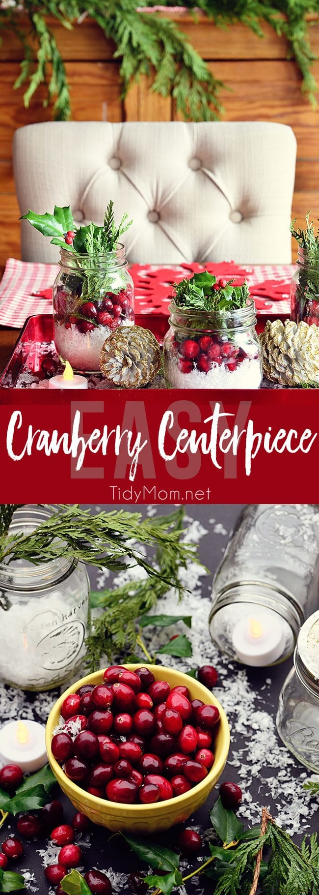 There is something magical about bringing the outside in, with this Easy Cranberry Centerpiece for the holidays. learn more at TidyMom.net