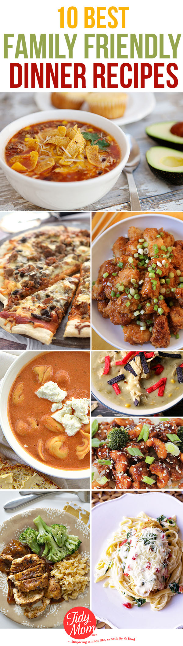Dinner recipes that will please the whole family tidymom 10 best family friendly dinner recipes at tidymom forumfinder Images