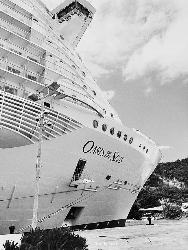 Royal Caribbean Oasis of the Seas cruise ship photo