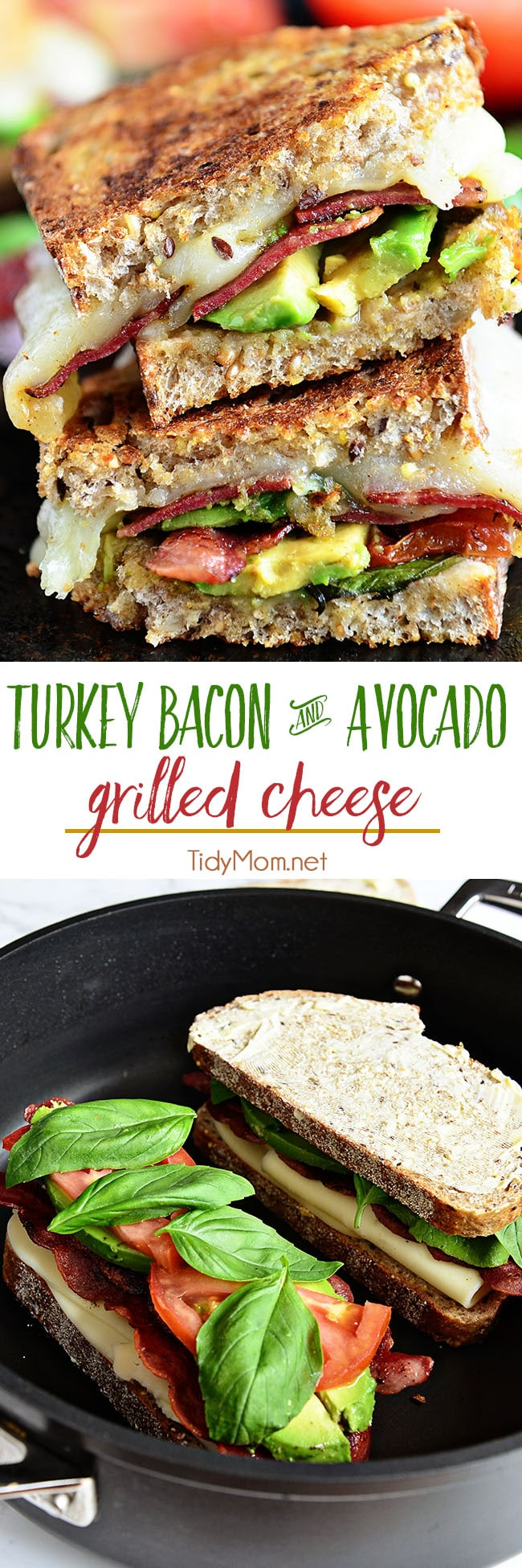 This has been one of those sandwiches that I like to just keep in my arsenal of quick, easy and absolutely delicious go-to recipes.  Great for summer, because you don't have to heat up the house, yet you still have a hot meal to put on the table. My whole family loves this Turkey Bacon and Avocado Grilled Cheese sandwich. Printable recipe + video at TidyMom.net #grilledcheese #sandwich #avocado #bacon #turkey #cheese