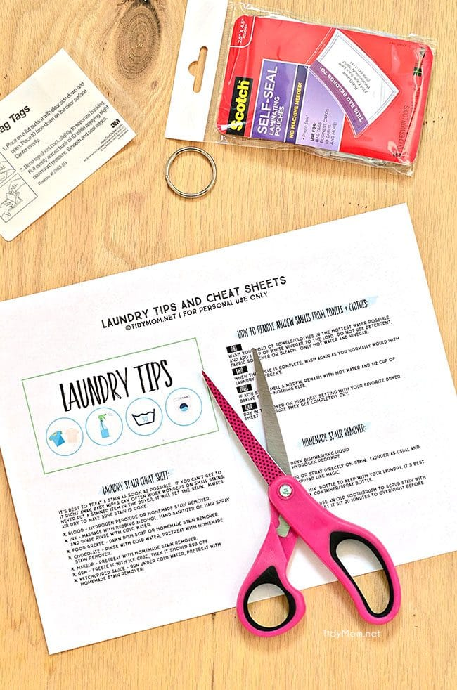 Free Printable Laundry Tips Flip Book at TidyMom.net