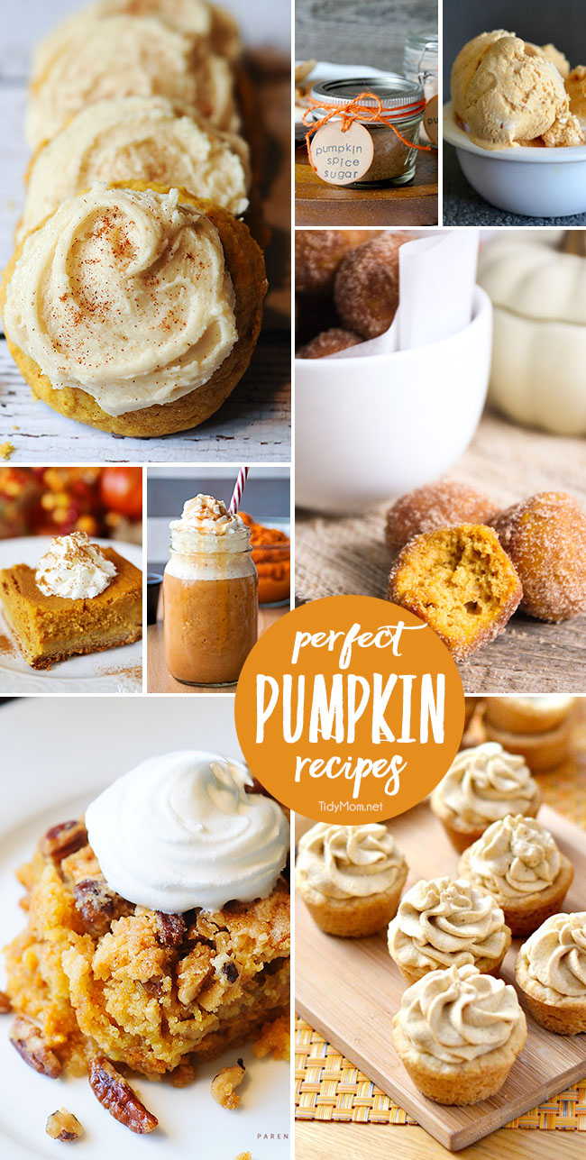 Just in time for fall! Collection of PUMPKIN RECIPES you need to make this fall. From Pumpkin Spice cookies and Pumpkin Ice Cream to Pumpkin butter, Pumpkin milkshake and more! Find all the perfect pumpkin recipes at TidyMom.net