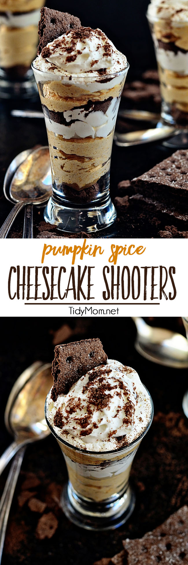A shot of no-bake Pumpkin Spice Cheesecake with a chocolate graham cracker crust and whipped topping for the perfect fall dessert. Get the recipe at TidyMom.net #pumpkin #dessert #cheesecake #nobake