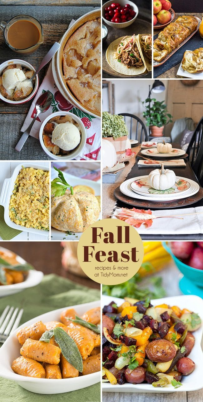 It is officially time to embrace all that autumn has to offer. Time to welcoming the chilly weather, and fall harvests. Click to find everything for Fall Feast recipes and entertaining at TidyMom.net