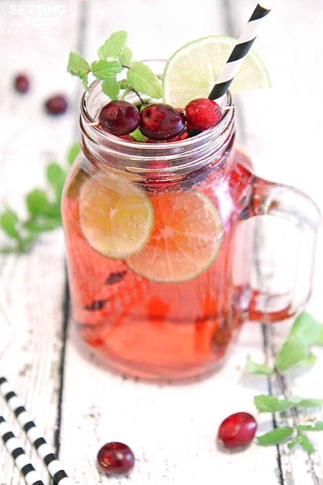 delicious Cranberry Mojito Fizz cocktail