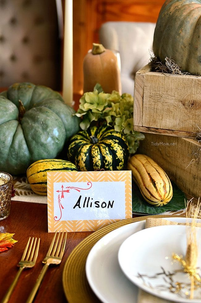 FREE DIY printable and reusable laminated place cards. download at TidyMom.net and print at home.