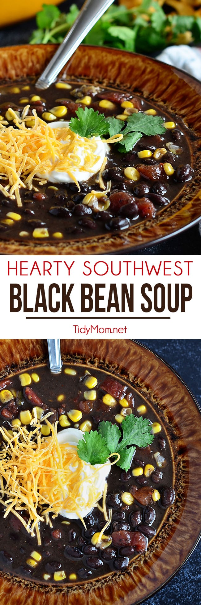 This Hearty Southwest Black Bean Soup is full of flavor, you'll never miss the meat! Ready for the table in 30 minutes, but it's even better the next day!! Get the easy recipe + watch how-to video at TidyMom.net #soup #recipe #video #beans #dinner