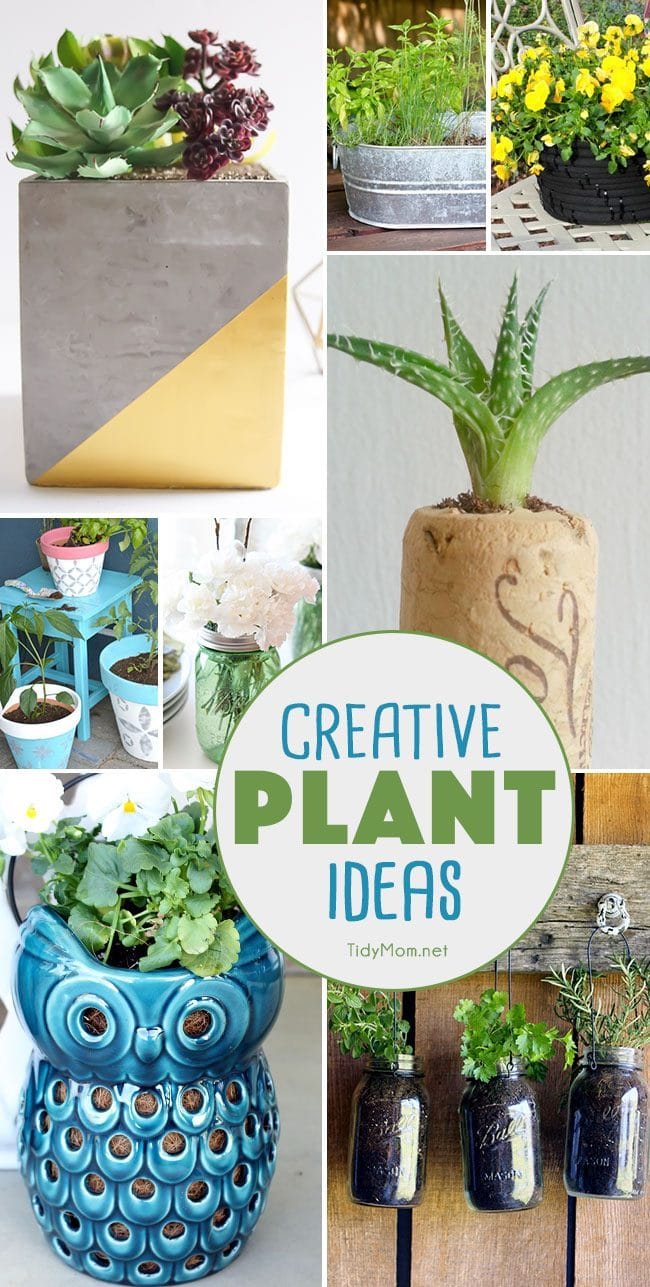 Creative Plant Ideas. Unique planters, diy planters, centerpieces and more!! details at TidyMom.net