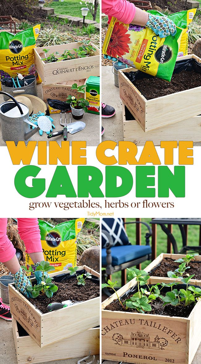 Vegetables, Herbs And Flowers Can Thrive In Wine Boxesu2014or In Other Crates.