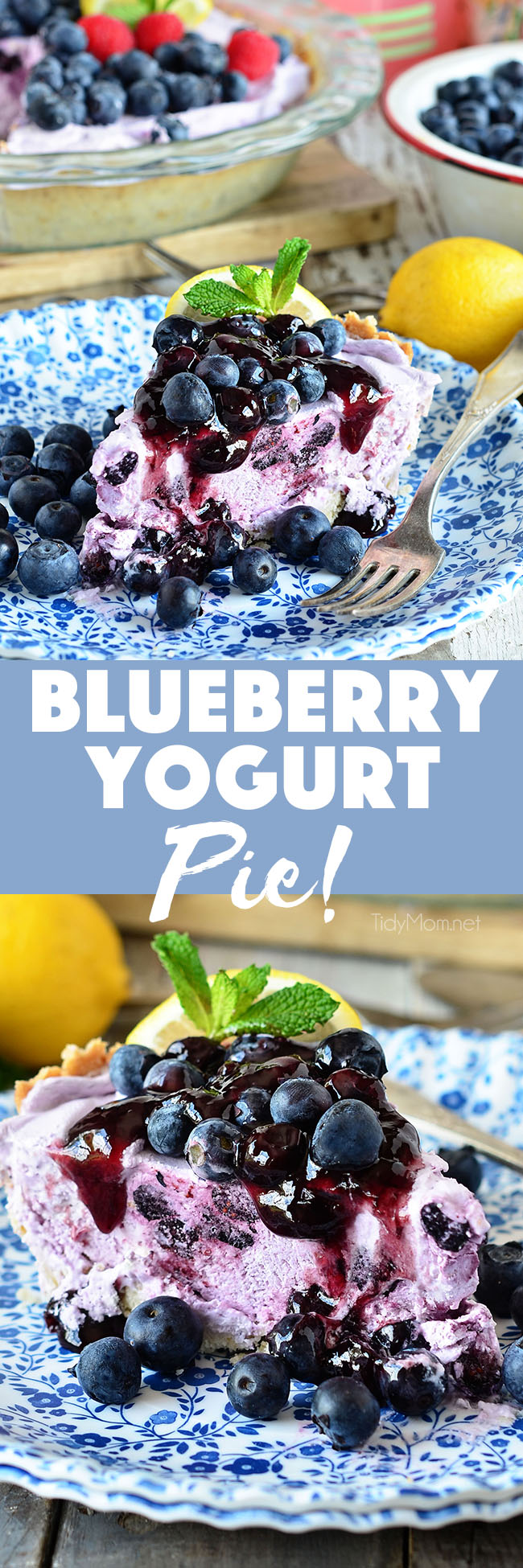 Blueberry Yogurt Pie is the perfect dessert for summer, or any time of year! A simple lemon shortbread crust filled with creamy yogurt, whipped topping and blueberries is topped off with lemon blueberry fruit spread. Serve Blueberry Yogurt Pie frozen or cold, either way it wont last long! In a hurry? use a store bought ready-made shortbread crust and have this pie in the freezer in 5 minutes! recipe at TidyMom.net