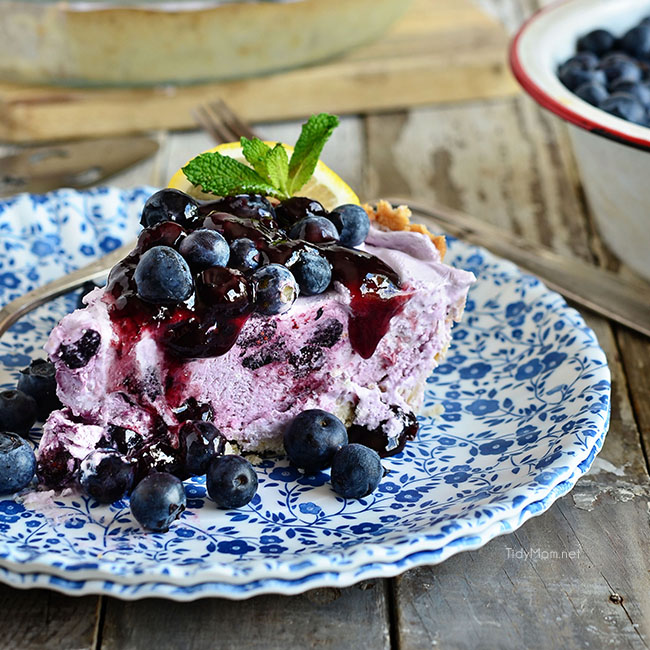 Blueberry Yogurt Pie on a blue floral plate