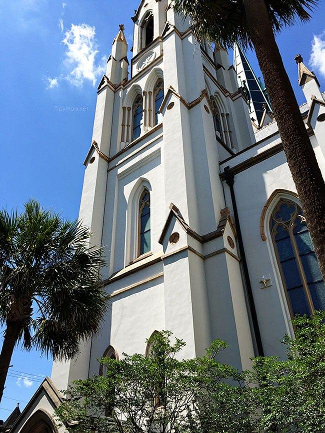 Cathedral of St. John the Baptist Savannah, GA. More Savannah Sightseeing at TidyMom.net