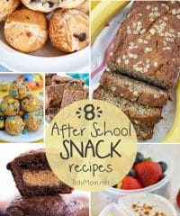 Whether you're looking for a weekend treat of after school bite, here are 8 HOMEMADE AFTER SCHOOL SNACK RECIPES that kids will love to come home to.