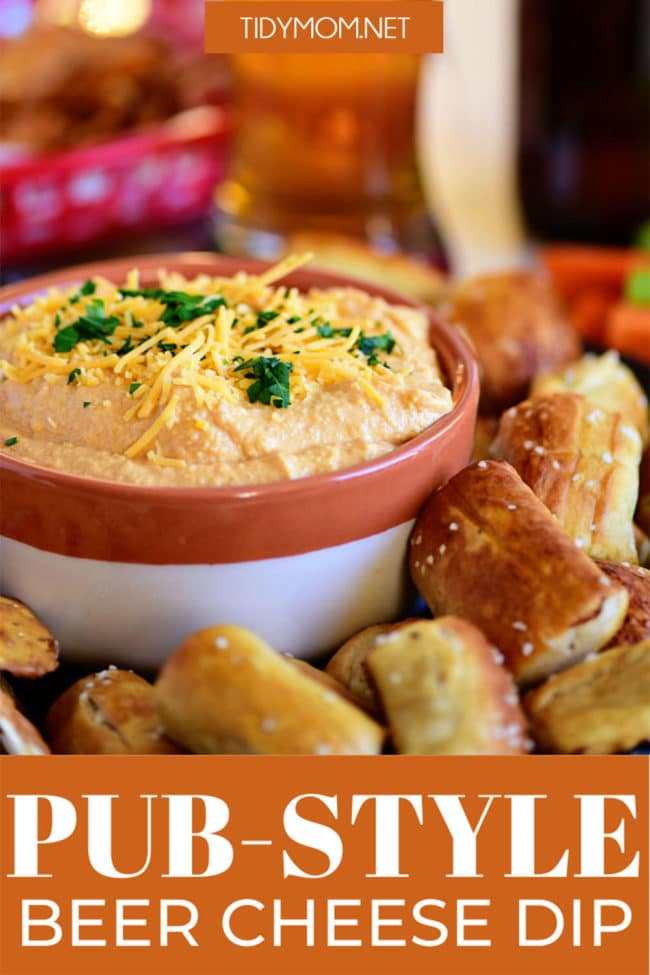 bowl of cheese dip with pretzels and beer around it