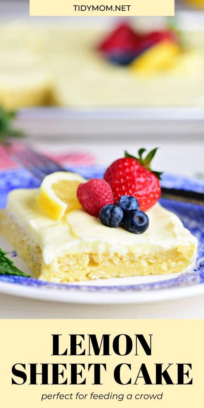 slice of cake with berries on top