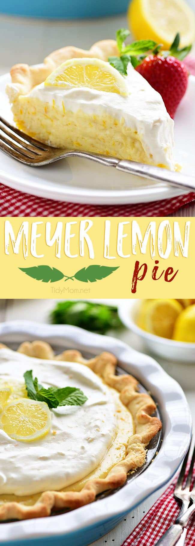 This Meyer Lemon Pie packs a ton of lemon flavor with a fluffy texture to a simple homemade dessert. Pops of sweet tangy Meyer lemons are perfect for spring. The pie is not overly sweet and has lots of citrus love all the way through to the homemade whipped cream for the top!  Get the full printable recipe at TidyMom.net #pie #lemon #lemonpie #meyerlemons #dessert