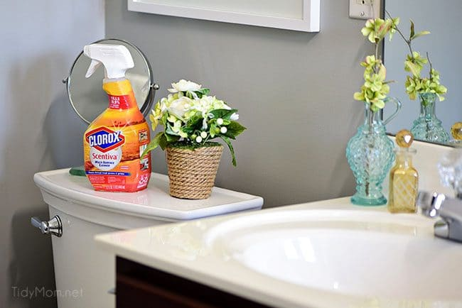 Clorox Scentiva disinfecting wipes and multi-surface cleaner clean, disinfect, deodorize and freshen your home.
