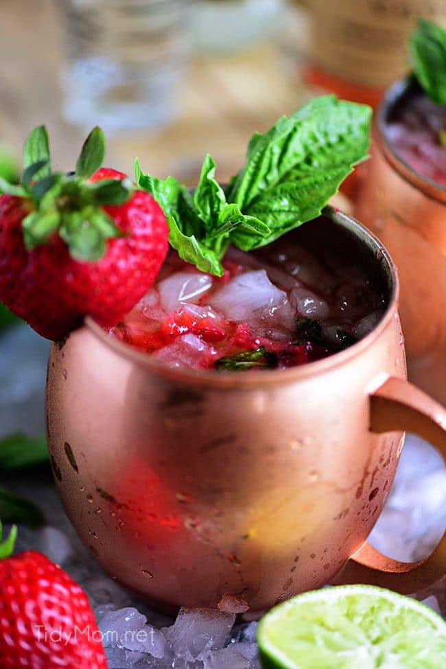 Strawberry Basil Moscow Mule is the perfect summer cocktail. Made like a traditional Moscow Mule with vodka, ginger beer and lime, with the addition of muddled fresh juicy strawberries and basil. Print the recipe at TidyMom.net