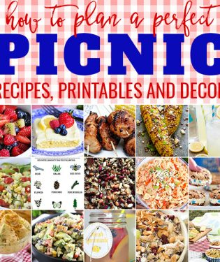 How to Plan a Perfect Picnic. Get recipes, printables and more to plan a perfect picnic at TidyMom.net