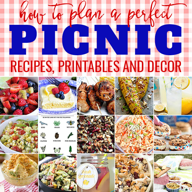 How To Plan A Perfect Picnic Tidymom