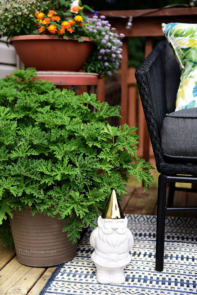Learn How to Decorate a Small Deck or Patio and keep pesky pests away with plants. Get more details at TidyMom.net